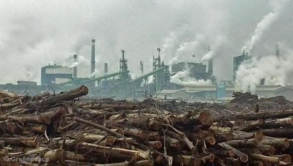 Celulózo-papierenský priemysel