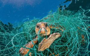 Naša planéta sa topí v plastoch